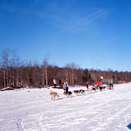 Alaska State Champion sled dog races of Kenai and Soldotna 1964