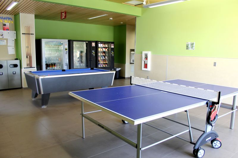 Rec Room showing a ping pong and billiard table.